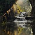 Photos: 亀岩の洞窟 (4)
