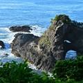 Photos: 伊豆の海-1-