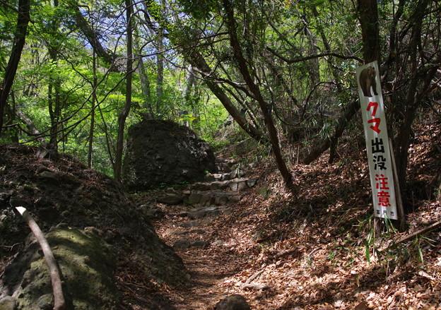 山路を歩く