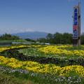 写真: 花の丘
