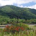 写真: 赤城山