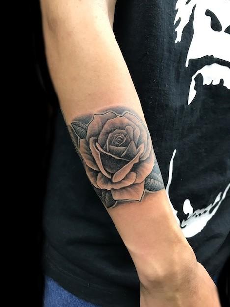 薔薇 バラ/Rose