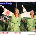 写真: 平城人_スーパーよさこい2008_01