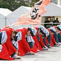 よさこい柏紅塾_東京大マラソン祭り2008_19
