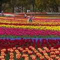 木曽三川公園 (44)