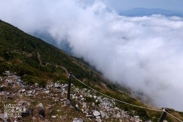 伊吹山 (31)上野登山道
