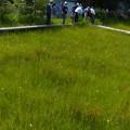 吉賀池湿地風景 (3)