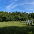 吉賀池湿地全景