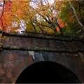 愛岐トンネル群 (80)
