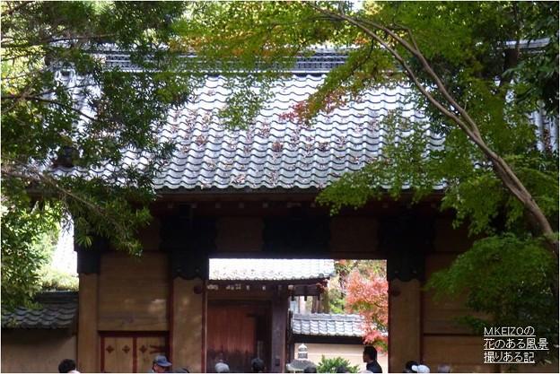 妙興寺 (1)