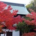 妙興寺 (55)