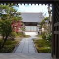 妙興寺 (58)