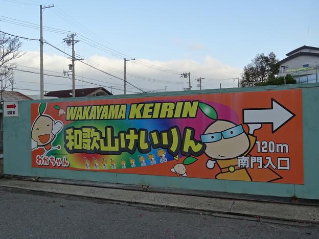 和歌山競輪2