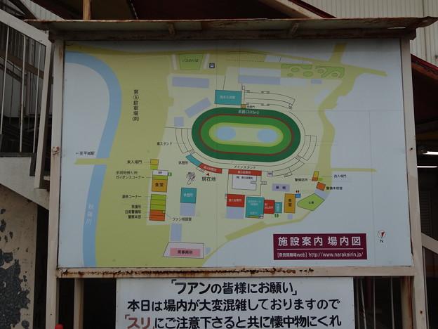 奈良競輪3