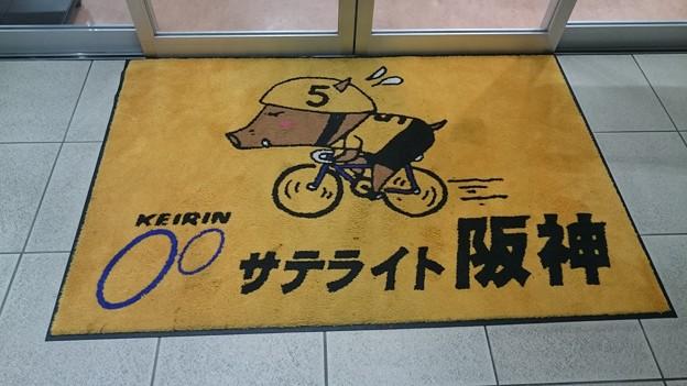 サトライト阪神4