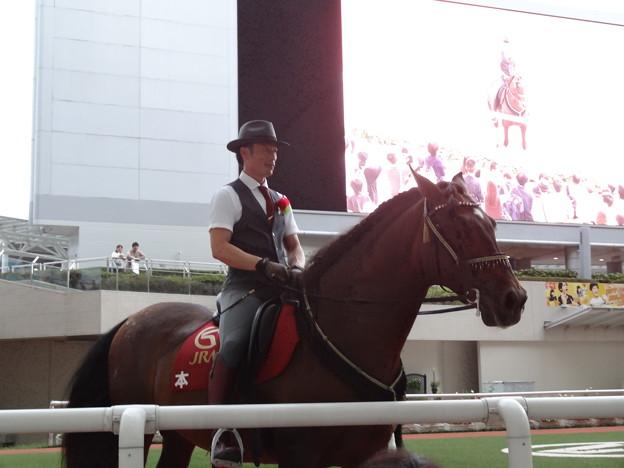 阪神競馬場 アンダルシアホースショー2