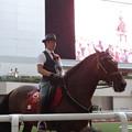 写真: 阪神競馬場 アンダルシアホースショー2