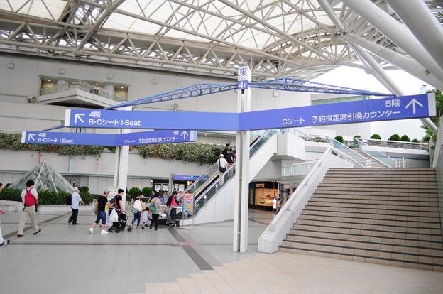 阪神競馬場13