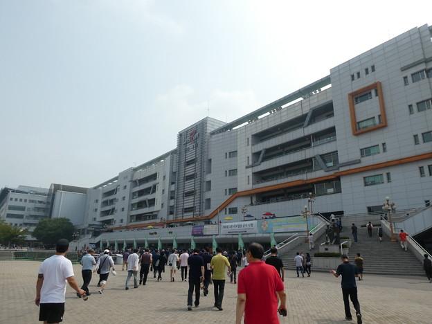 韓国競馬公園 Lets Run Park 1