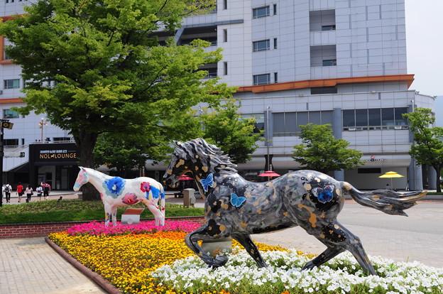 韓国競馬公園 Lets Run Park 10