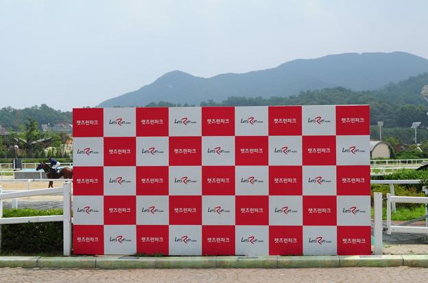 韓国競馬公園 Lets Run Park 18