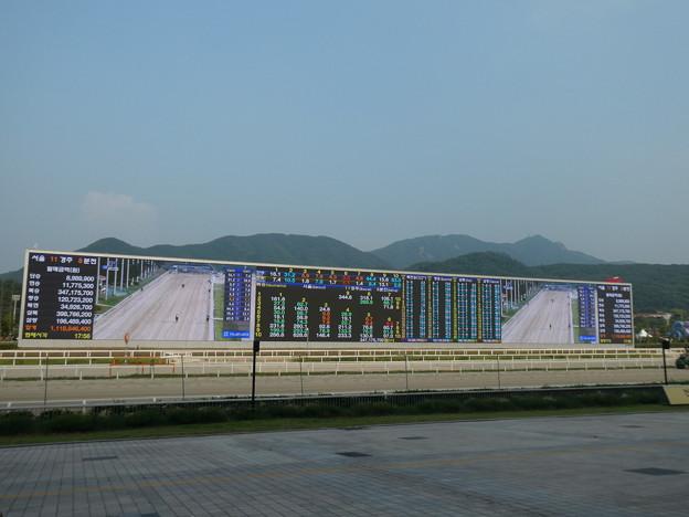 韓国競馬公園 Lets Run Park 35