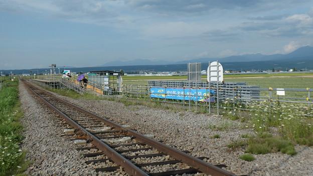 ラベンダー畑駅 (1)