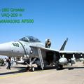写真: VAQ-209