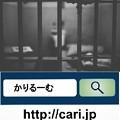Photos: 最強の捜査機関、東京地検特捜部は最後の砦!!
