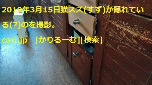 2019年3月分 鈴木社長の備忘・日記 cari.jp