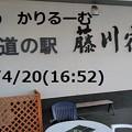 Photos: 2019年4月分 共同親権 単独親権 cari.jp