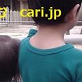Photos: のりもの博物館 子どもも大人も楽しめる cari.jp
