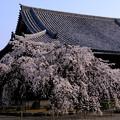 写真: 道成寺