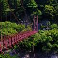 写真: 赤い吊り橋