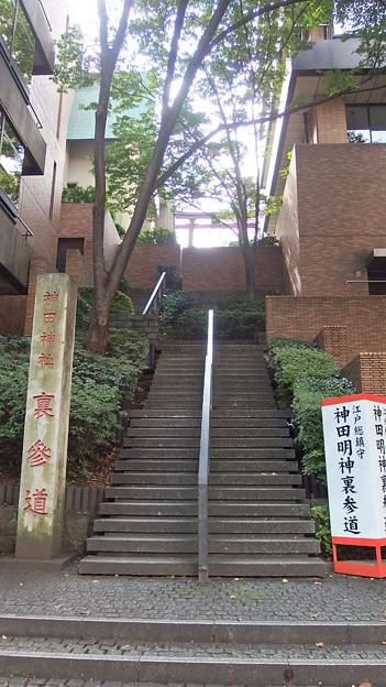 階段 裏参道