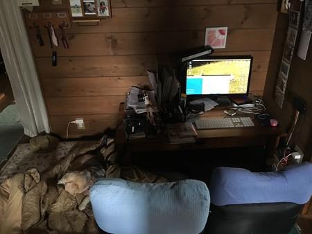 パソコン周り、ぐちゃぐちゃ、そして布団かよ!(うみちゃんとおかーさん昼寝用)