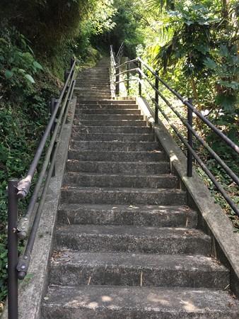 階段登ってみましょう!