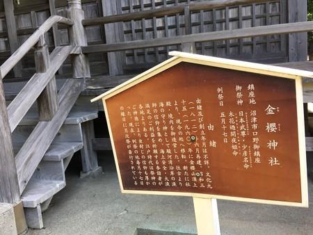 金櫻(かなざくら)神社というところです