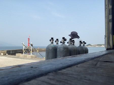 静浦の海とタンクに紛れているあかねーさん