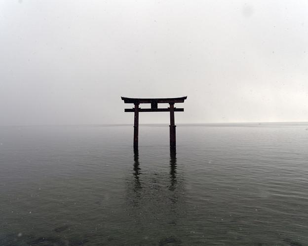 51日本-1雪の白鬚神社