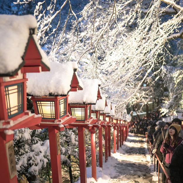 100日本-2雪山のライトアップ