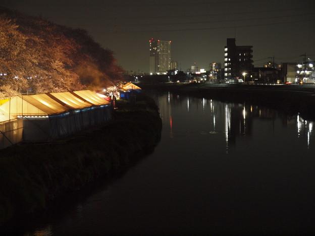 夜桜の露店テント村