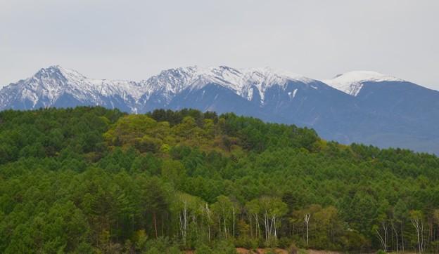 写真: 新緑そして八ヶ岳
