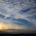 空に舞う雲