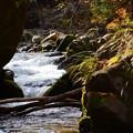 写真: 秋の渓谷ー2