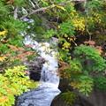 写真: 秋の渓谷ー1