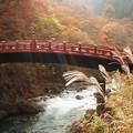 Photos: 日光