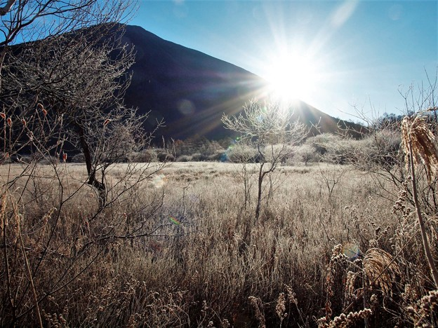 晩秋の戦場ヶ原「霜」