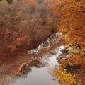 晩秋の渡良瀬渓谷