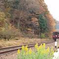 写真: わたらせ渓谷鉄道